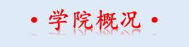 """四川文化产业职业学院 2020年""""五年一贯制统招大专""""招生简章"""